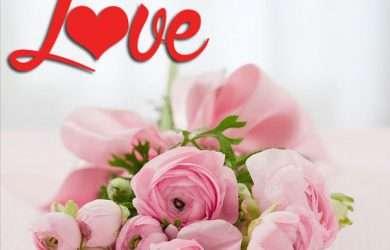 bellas frases para agradecer saludos de San Valentín