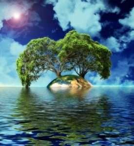 Descargar frases bonitas para conservar la naturaleza, descargar las mejores frases para cuidar la naturaleza