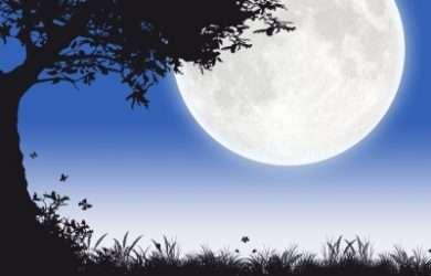 Descargar frases bonitas de amor para parejas en noche de luna llena