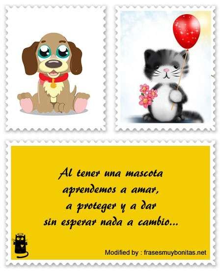 frases bonitas amor por las mascotas para facebook