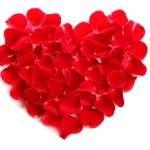 Descargar bonitas frases de amor para tu pareja, descargar las mejores frases tiernas para enviarle a tu pareja