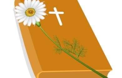 descargar frases bonitas cristianas sobre Dios para celulares, las màs bonitas frases cristianas sobre Dios para celulares