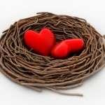 descargar frases bonitas de amor por San Valentín, las màs bonitas frases de amor por San Valentín