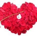 descargar frases bonitas de amor para whatsapp, las màs bonitas frases de amor para whatsapp