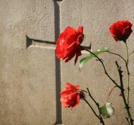 descargar mensajes de condolencias, nuevas palabras de condolencias
