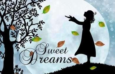 Descargar mensajes de dulces sueños mi princesa para dedicar por Telegram,