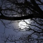 originales dedicatorias de buenas noches, compartir mensajes de buenas noches