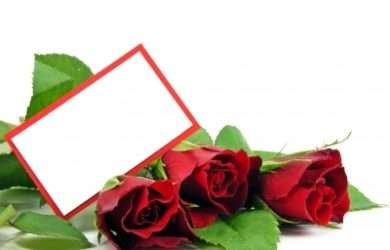 lindos textos de amor para mi amada, bonitos mensajes de amor para mi amada
