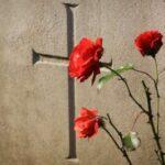 enviar nuevos pensamientos de condolencias para un amigo, originales mensajes de condolencias para un amigo