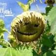 bajar palabras por el Día del Padre, originales frases por el Día del Padre