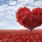 lindas dedicatorias de San Valentín para enviar