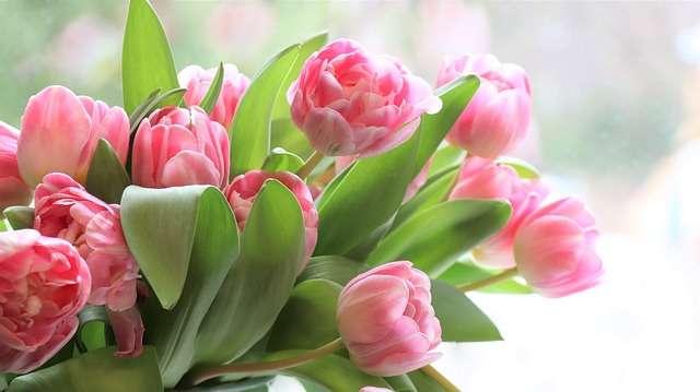 Buscar mensajes de amor para dedicar el día de la Madre por Whatsapp