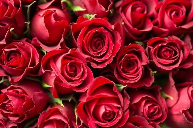 Bonitas tarjetas con dedicatorias de amor para el día de la Madre