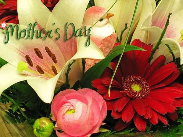 bellas frases bonitas para el dia de la madre